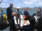 Lionfish Hunting in Providencia, Colombia